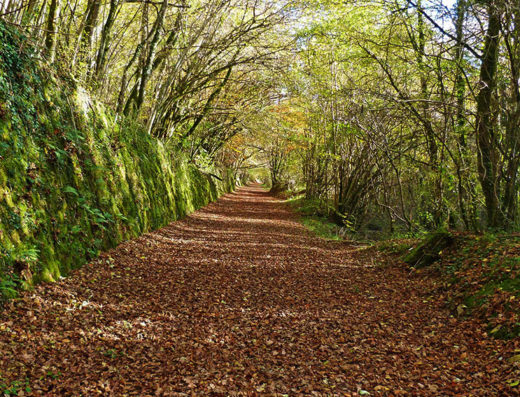 turismo rural y escapadas rurales por la sierra de aralar y urbasa de navarra descubre sus parques naturales la vía verde del plazaola