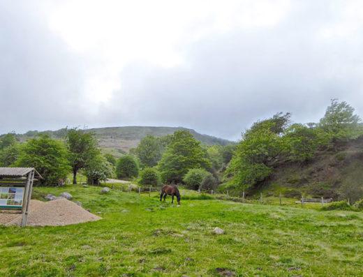 turismo rural y escapadas rurales en los pirineos de navarra descubre sus parques naturales como el de sorogain