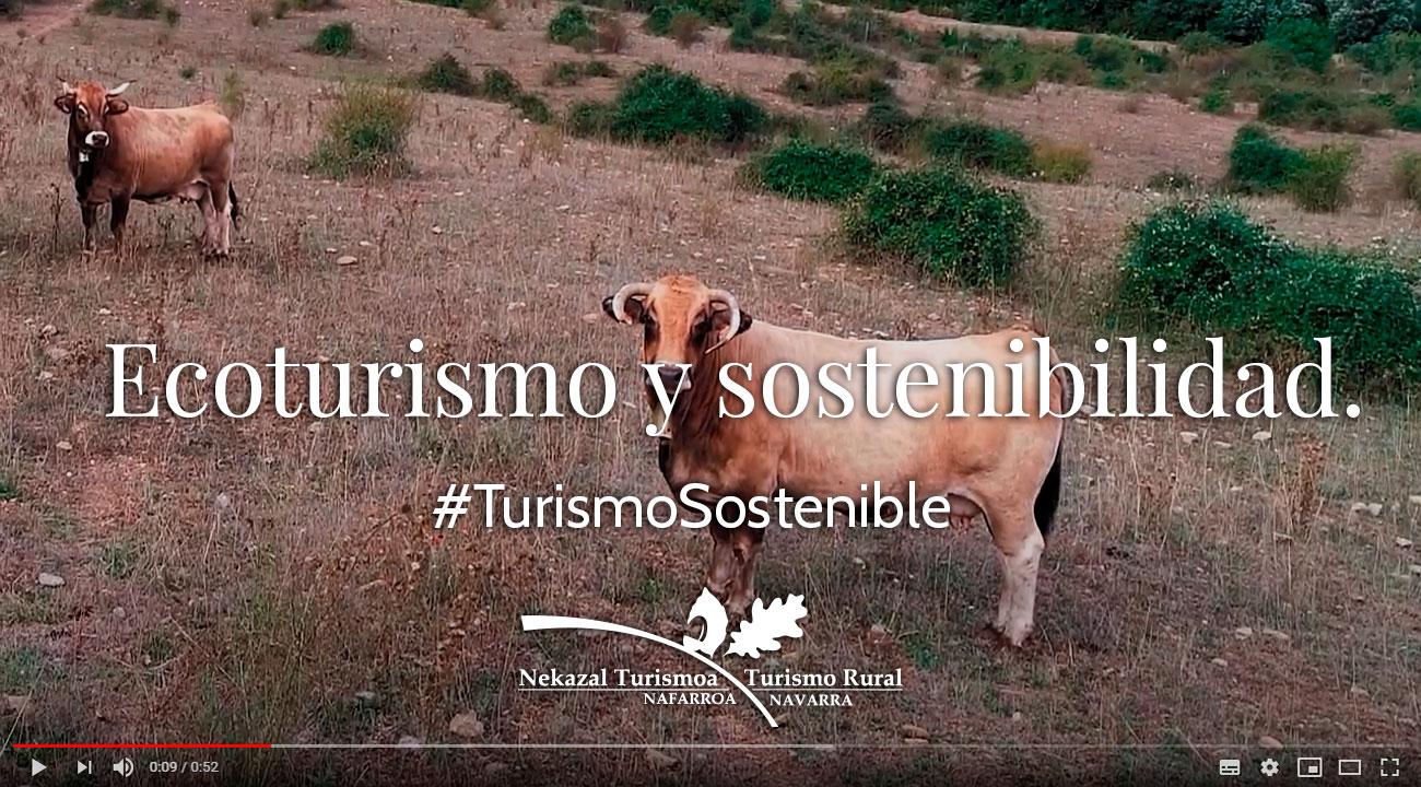 Ecoturismo y agroturismo turismo rural por españa en navarra alojamientos con encanto y actividades sostenibles en la naturaleza
